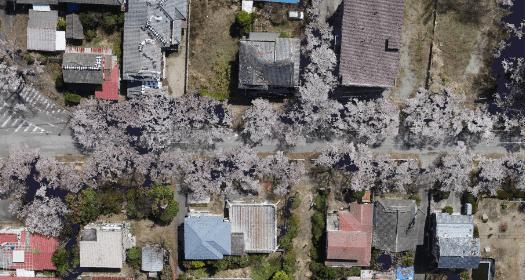 写真:UAVによる写真測量